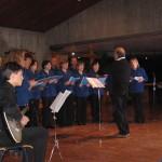 koncert v Vidmu