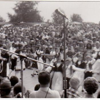 Kamenica 1975